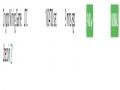 thumb_115180_cryptomininggame_190426032325.png